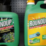 L'industrie consent à dévoiler (partiellement) ses études sur le glyphosate