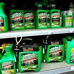 Et si demain, Monsanto était condamné pour écocide ?