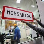 Monsanto accusé de « crimes contre l'humanité et écocide » par un tribunal international citoyen