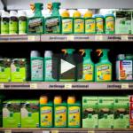 L'Agence européenne des produits chimiques interpellée sur le dossier glyphosate