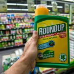 Ce que les « Monsanto Papers » révèlent du Roundup